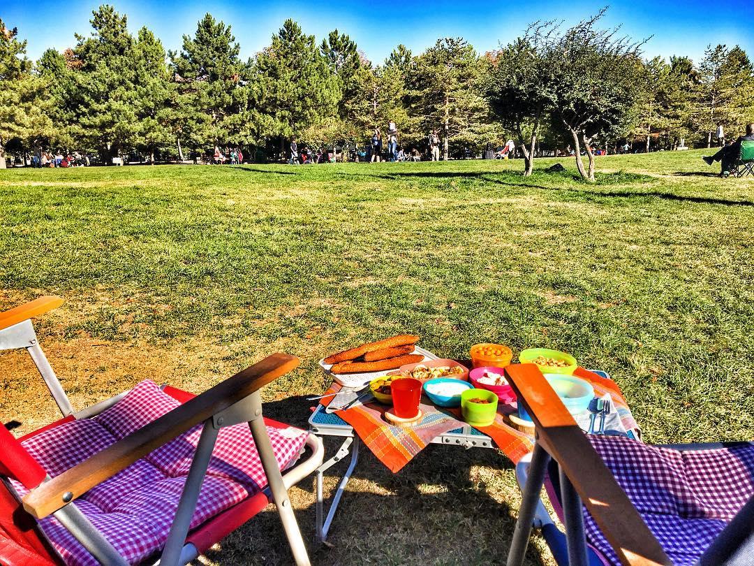 Ahlatlıbel Atatürk Parkı Hakkında Detaylı Bilgi - Doğa Rehberi